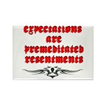 expectations Rectangle Magnet (100 pack)