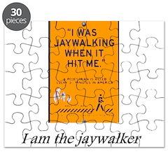 jaywalking Puzzle