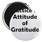 attitude-gratitude Magnet