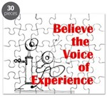 Voice of Experience Puzzle