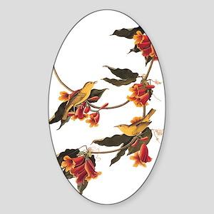 Rathbone's Warblers Vintage Audubon Art Sticker