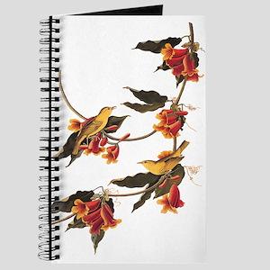 Rathbone's Warblers Vintage Audubon Art Journal