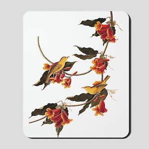 Rathbone's Warblers Vintage Audubon Art Mousepad