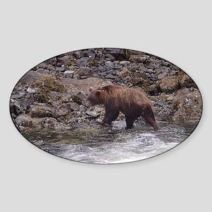 Summer 12 Bear Sticker