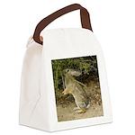 Reaching Rabbit Canvas Lunch Bag