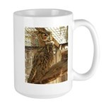 Zoo Owl Items Mugs