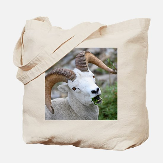 Cool Greys lunch Tote Bag