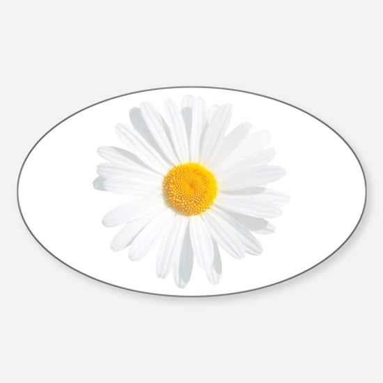 Cute White daisy flower Sticker (Oval)