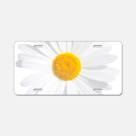 fresh white daisy Aluminum License Plate