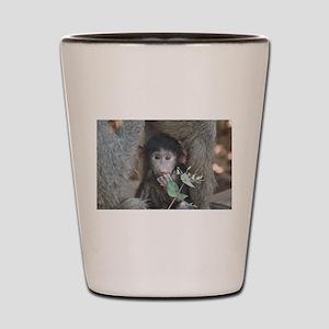 Baby Baboon Shot Glass