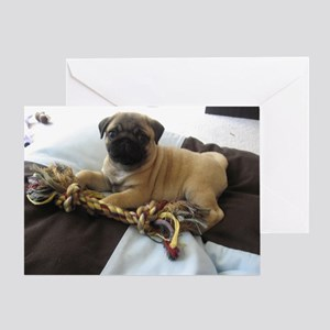 Happy Holiday Pug Puppy Greeting Card