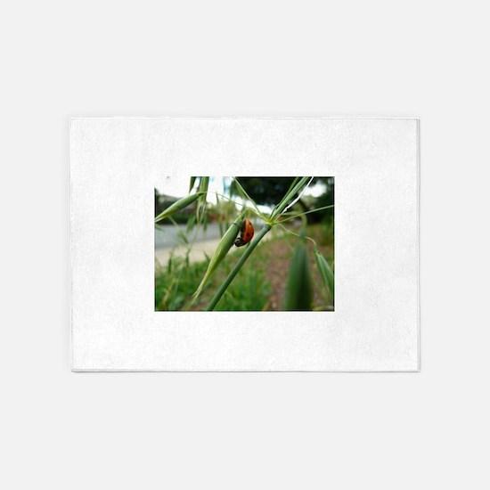 ladybug climbing grass at Thousand 5'x7'Area Rug