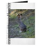 Black Tailed Jackrabbit Journal