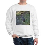 Black Tailed Jackrabbit Sweatshirt