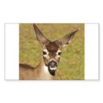 Young Doe Rectangle Sticker