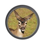 Young Doe Wall Clock