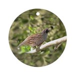 California Quail Ornament (Round)
