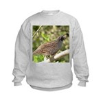 California Quail Kids Sweatshirt