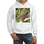 California Quail Hooded Sweatshirt