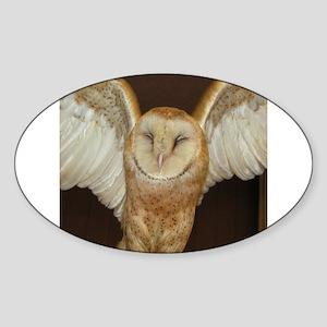 Barn Owl Oval Sticker