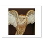 Barn Owl Small Poster