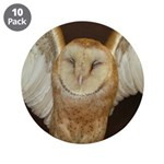 Barn Owl 3.5