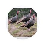 Three Tom Turkey Gobblers 3.5