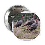 Three Tom Turkey Gobblers 2.25