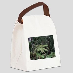 Dandenong Ranges Rainforest 2 Canvas Lunch Bag