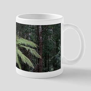 Dandenong Ranges Rainforest 2 Mugs