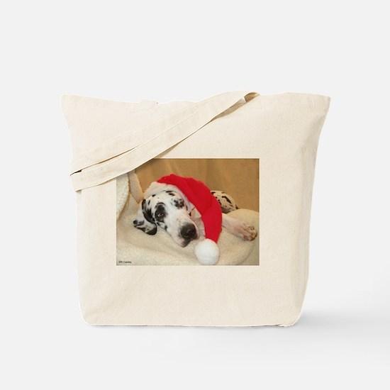 NH Santa's Hat2 Tote Bag