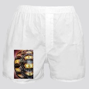 10th Pattern; Turtle Highlights Boxer Shorts