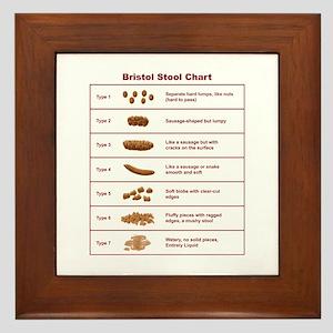 Bristol Stool Chart / Scale Framed Tile
