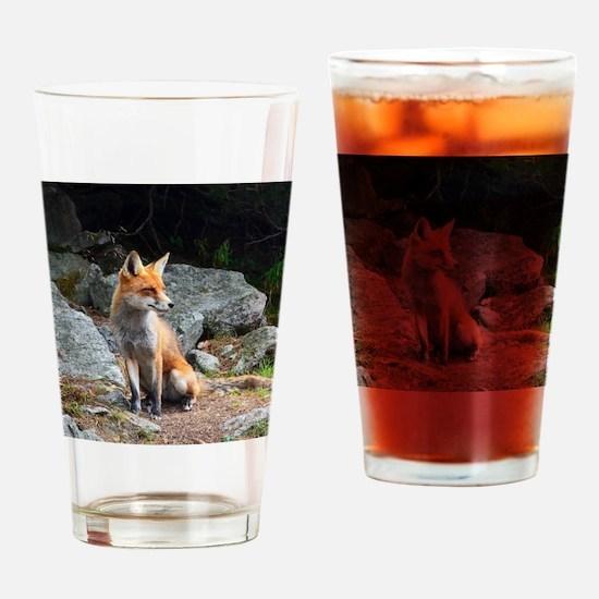 Funny Fox head Drinking Glass