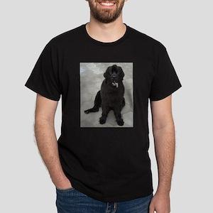 newfie sitting T-Shirt