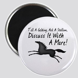 Discuss It With A Mare! Magnet