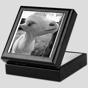 Goofy Goat Keepsake Box