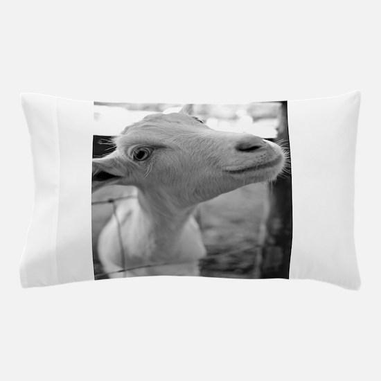 Goofy Goat Pillow Case