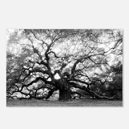 Cute Oak Postcards (Package of 8)