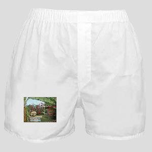 Jerk_Chicken_Stand_Negril_Jamaica Boxer Shorts