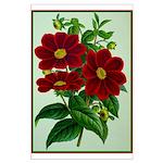 Vintage Flower Print Poster