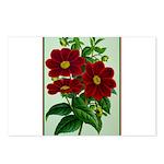 Vintage Flower Print Postcards (Package of 8)