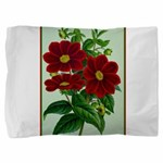 Vintage Flower Print Pillow Sham