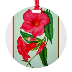 Red Morning Glorys Round Ornament