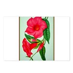 Red Morning Glorys Postcards (Package of 8)