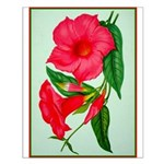Red Morning Glorys Small Poster