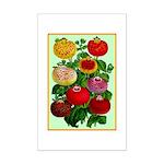 Chinese Lantern Vintage Flower Print Poster Print