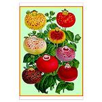 Chinese Lantern Vintage Flower Print Poster