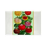 Chinese Lantern Vintage Flower Print Magnets