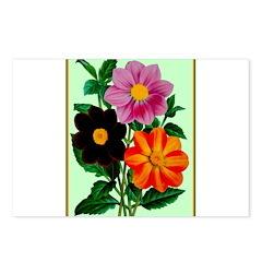 Colorful Flowers Vintage Poster Print Postcards (P